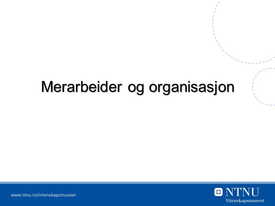 Merarbeider og organisasjon