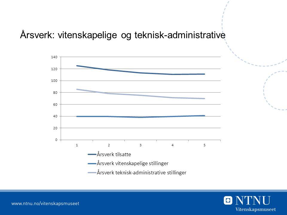 Årsverk: vitenskapelige og teknisk-administrative