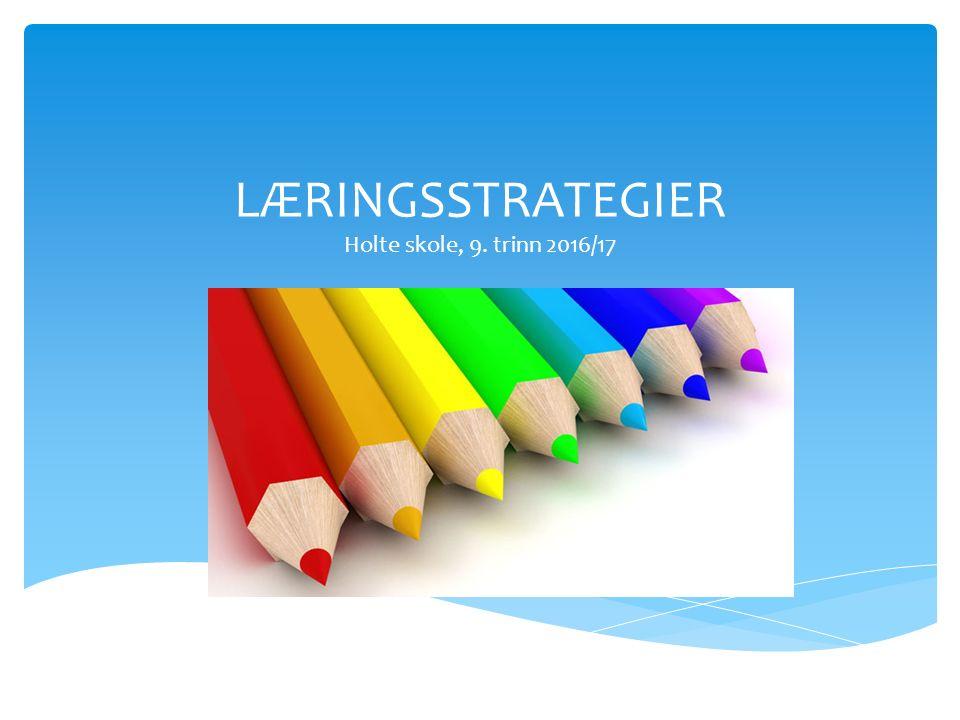 LÆRINGSSTRATEGIER Holte skole, 9. trinn 2016/17