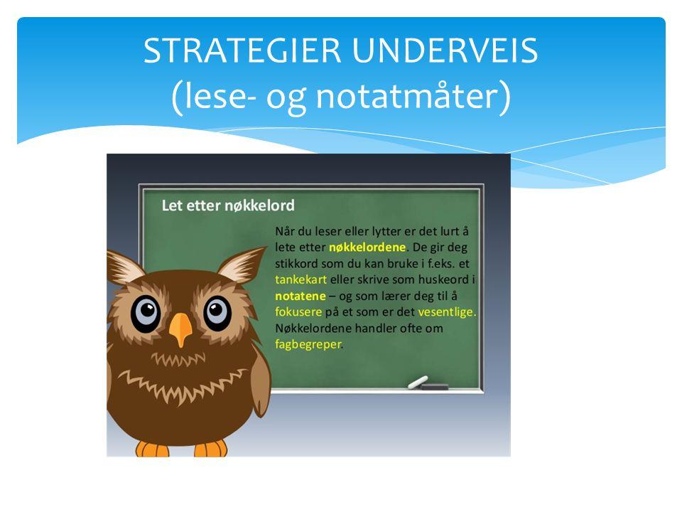 STRATEGIER UNDERVEIS (lese- og notatmåter)