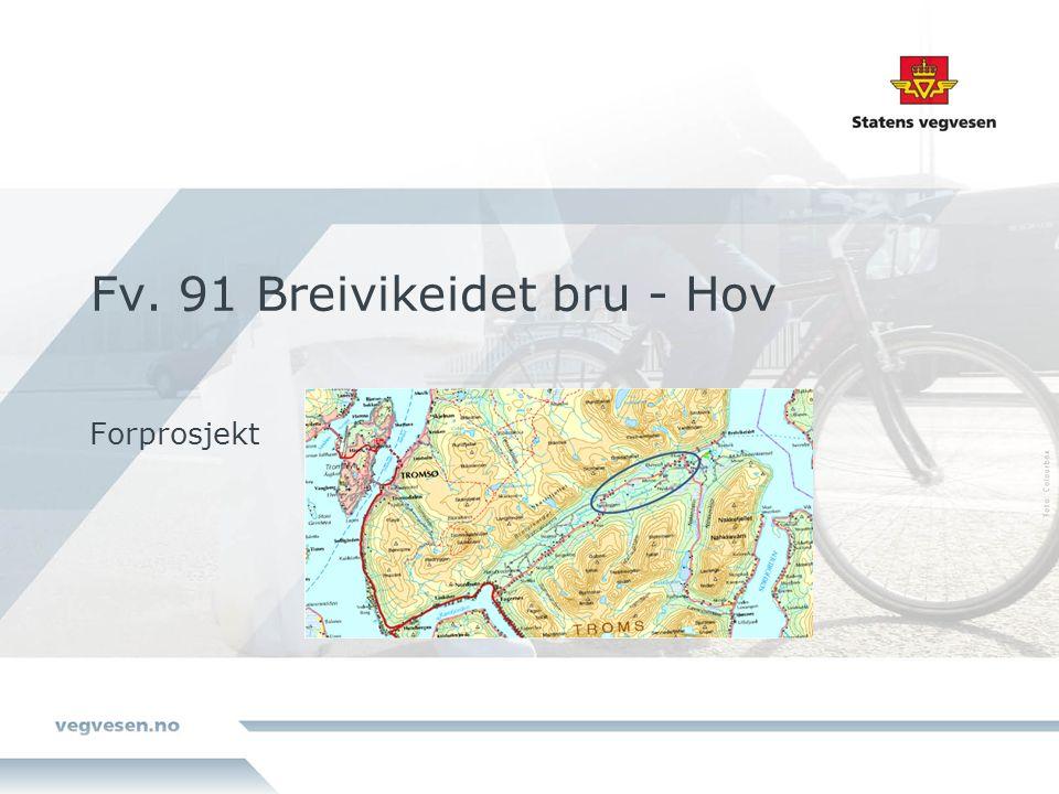 Fv. 91 Breivikeidet bru - Hov Forprosjekt