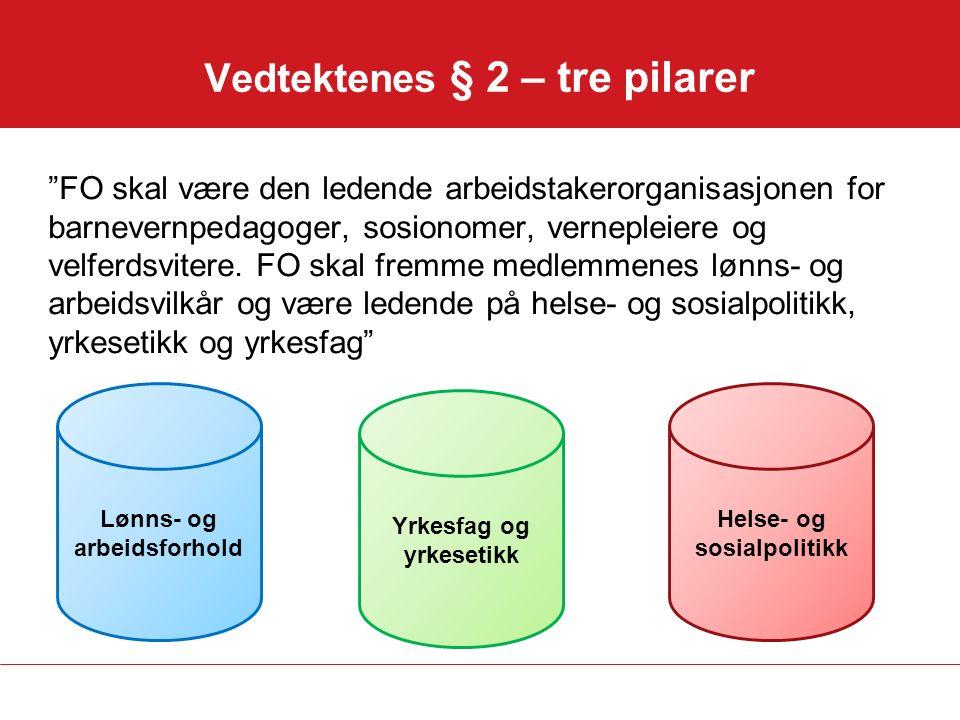 Vedtektenes § 2 – tre pilarer FO skal være den ledende arbeidstakerorganisasjonen for barnevernpedagoger, sosionomer, vernepleiere og velferdsvitere.