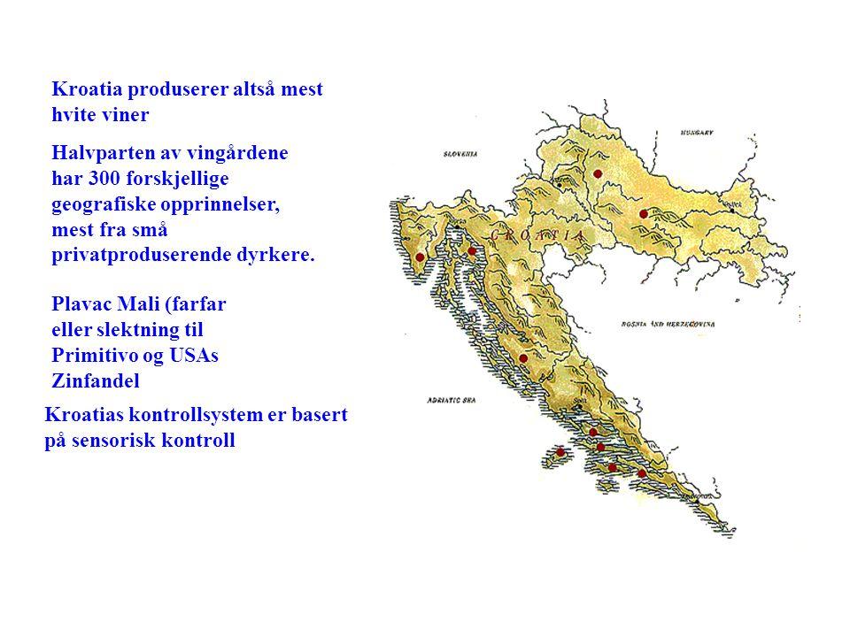 Kroatias kontrollsystem er basert på sensorisk kontroll Kroatia produserer altså mest hvite viner Halvparten av vingårdene har 300 forskjellige geogra