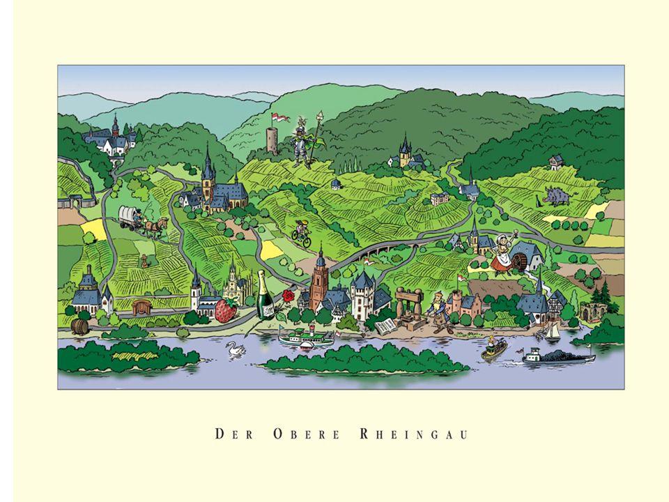 Vinområder langs Rhinen Mosel-Saar-Ruwer produserer en fortynnet og pikant Riesling, deilig lett og med lavt akloholinnhold Rheingau og også fra Pfalz, er kraftigere og fyldigere med en nesten frodig, ferskenaktig karakter Vin fra Nahe og Rheinhessen varierer mer i kvalitet.