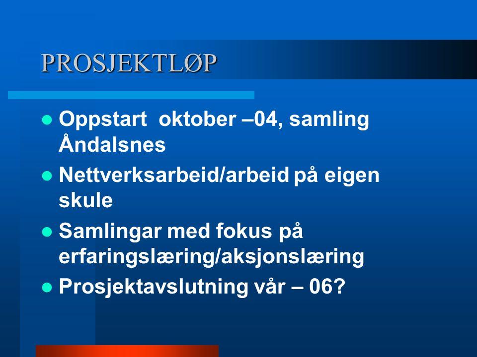 PROSJEKTLØP Oppstart oktober –04, samling Åndalsnes Nettverksarbeid/arbeid på eigen skule Samlingar med fokus på erfaringslæring/aksjonslæring Prosjek