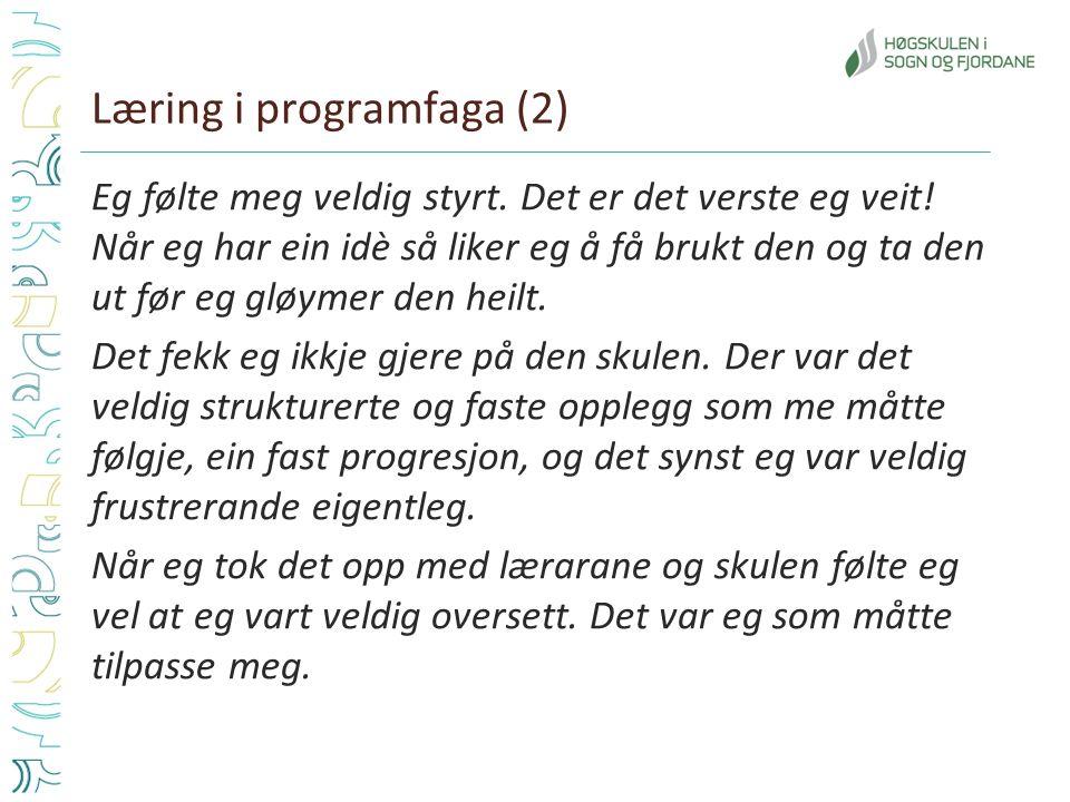 Læring i programfaga (2) Eg følte meg veldig styrt. Det er det verste eg veit! Når eg har ein idè så liker eg å få brukt den og ta den ut før eg gløym