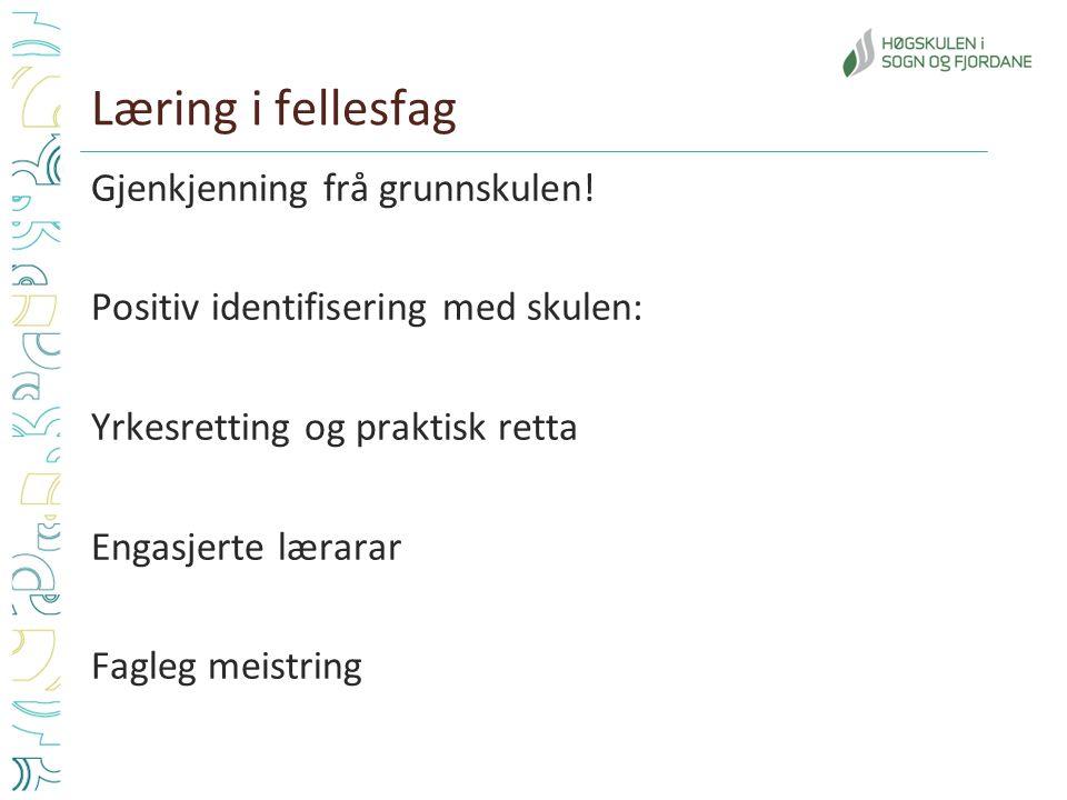 Læring i fellesfag Gjenkjenning frå grunnskulen! Positiv identifisering med skulen: Yrkesretting og praktisk retta Engasjerte lærarar Fagleg meistring