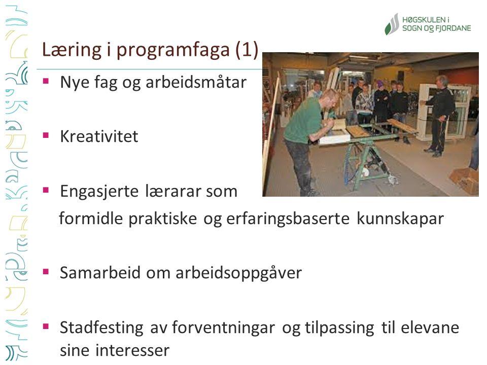 Læring i programfaga (1)  Nye fag og arbeidsmåtar  Kreativitet  Engasjerte lærarar som formidle praktiske og erfaringsbaserte kunnskapar  Samarbei