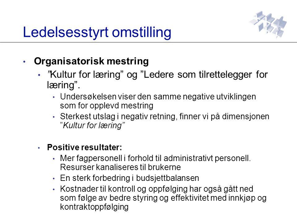 Ledelsesstyrt omstilling Organisatorisk mestring Kultur for læring og Ledere som tilrettelegger for læring .