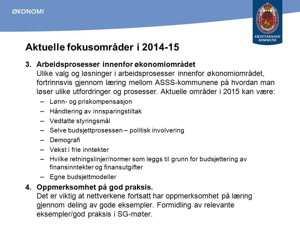 Aktuelle fokusområder i 2014-15 3.Arbeidsprosesser innenfor økonomiområdet Ulike valg og løsninger i arbeidsprosesser innenfor økonomiområdet, fortrin