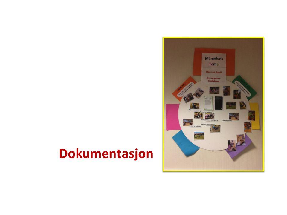 Dokumentasjon