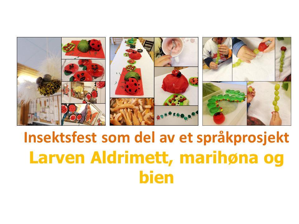 Insektsfest som del av et språkprosjekt Larven Aldrimett, marihøna og bien