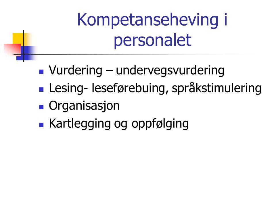 Kompetanseheving i personalet Vurdering – undervegsvurdering Lesing- leseførebuing, språkstimulering Organisasjon Kartlegging og oppfølging
