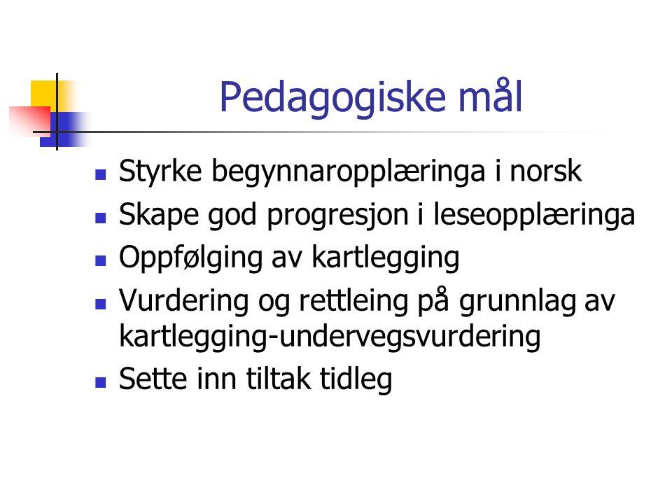 Pedagogiske mål Styrke begynnaropplæringa i norsk Skape god progresjon i leseopplæringa Oppfølging av kartlegging Vurdering og rettleing på grunnlag av kartlegging-undervegsvurdering Sette inn tiltak tidleg