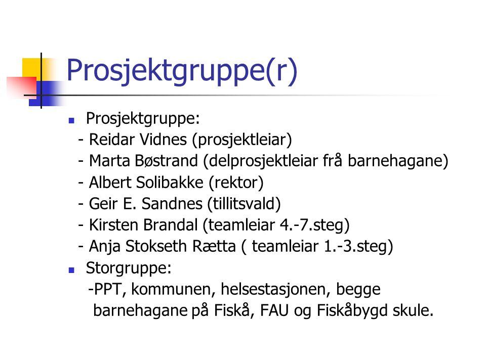 Prosjektgruppe(r) Prosjektgruppe: - Reidar Vidnes (prosjektleiar) - Marta Bøstrand (delprosjektleiar frå barnehagane) - Albert Solibakke (rektor) - Geir E.
