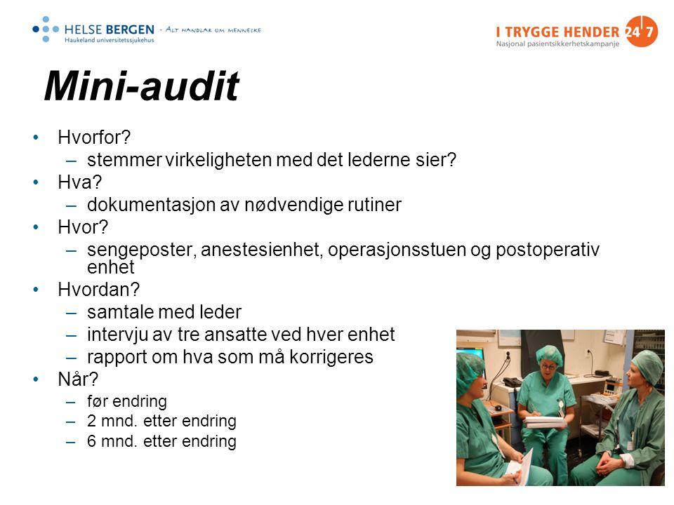 Mini-audit Hvorfor. –stemmer virkeligheten med det lederne sier.