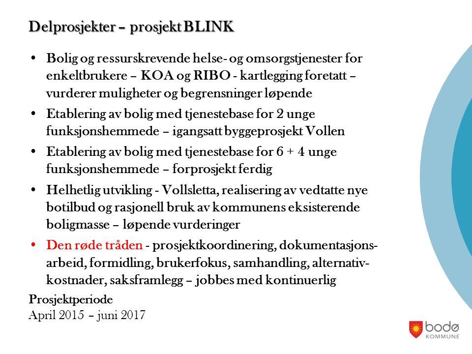 Delprosjekter – prosjekt BLINK Bolig og ressurskrevende helse- og omsorgstjenester for enkeltbrukere – KOA og RIBO - kartlegging foretatt – vurderer m
