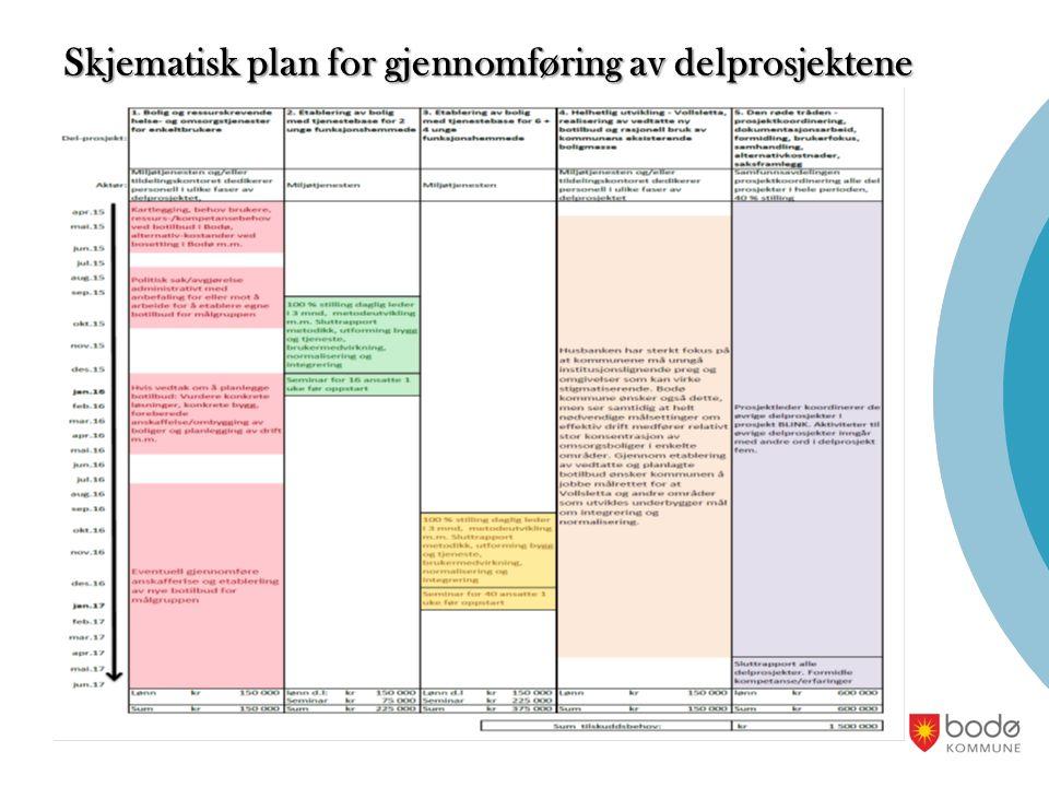 Skjematisk plan for gjennomføring av delprosjektene