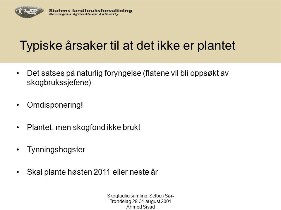 Typiske årsaker til at det ikke er plantet Det satses på naturlig foryngelse (flatene vil bli oppsøkt av skogbrukssjefene) Omdisponering! Plantet, men