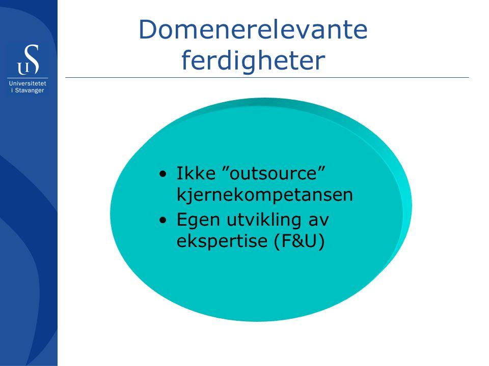 Domenerelevante ferdigheter Ikke outsource kjernekompetansen Egen utvikling av ekspertise (F&U)