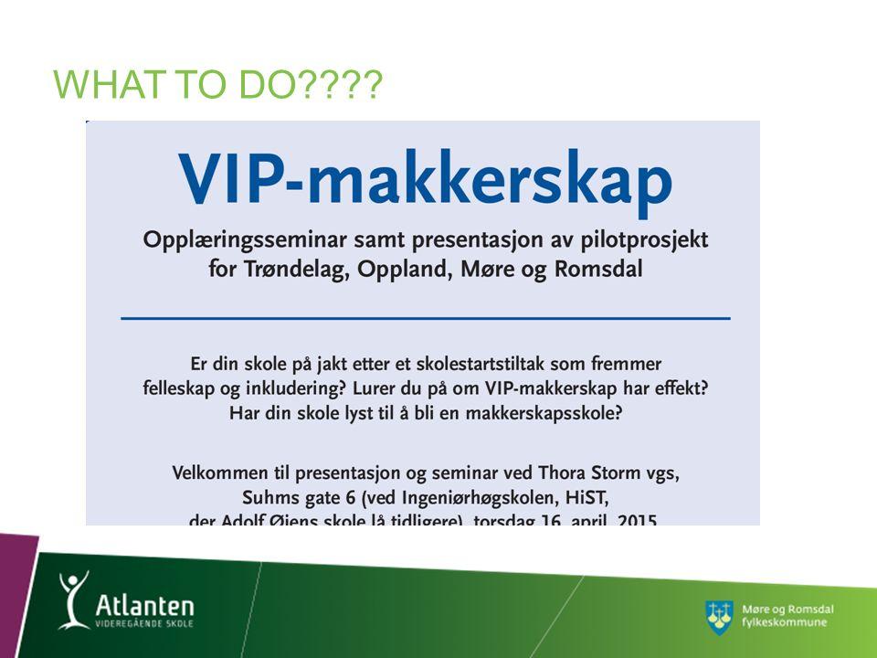 HVA ER VIP-MAKKERSKAP?