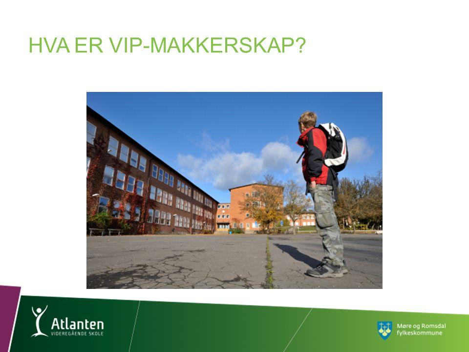HVA ER VIP-MAKKERSKAP