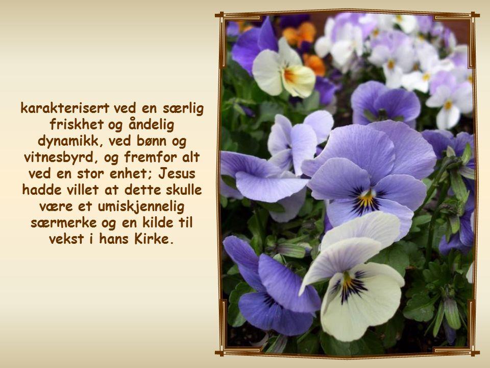 Hele flokken av troende var ett i hjerte og sinn, og ingen kalte det han eide for sitt eget; de hadde alt felles. (Ap.gj 4,32)