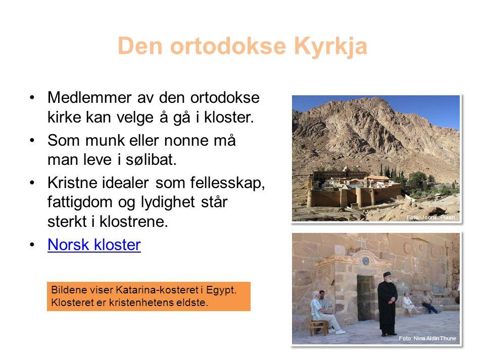 Den ortodokse Kyrkja Medlemmer av den ortodokse kirke kan velge å gå i kloster.