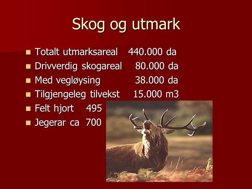 Skog og utmark Totalt utmarksareal 440.000 da Totalt utmarksareal 440.000 da Drivverdig skogareal 80.000 da Drivverdig skogareal 80.000 da Med vegløysing 38.000 da Med vegløysing 38.000 da Tilgjengeleg tilvekst 15.000 m3 Tilgjengeleg tilvekst 15.000 m3 Felt hjort 495 Felt hjort 495 Jegerar ca 700 Jegerar ca 700
