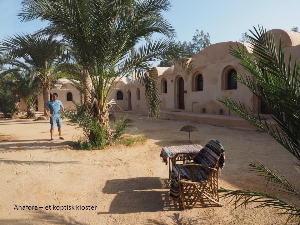 Anafora – et koptisk kloster