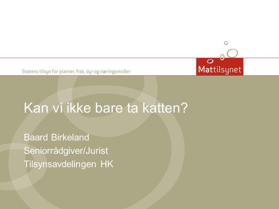 Kan vi ikke bare ta katten? Baard Birkeland Seniorrådgiver/Jurist Tilsynsavdelingen HK