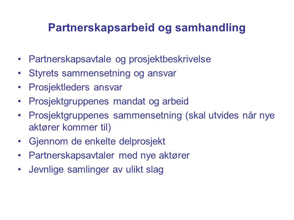 Partnerskapsarbeid og samhandling Partnerskapsavtale og prosjektbeskrivelse Styrets sammensetning og ansvar Prosjektleders ansvar Prosjektgruppenes ma