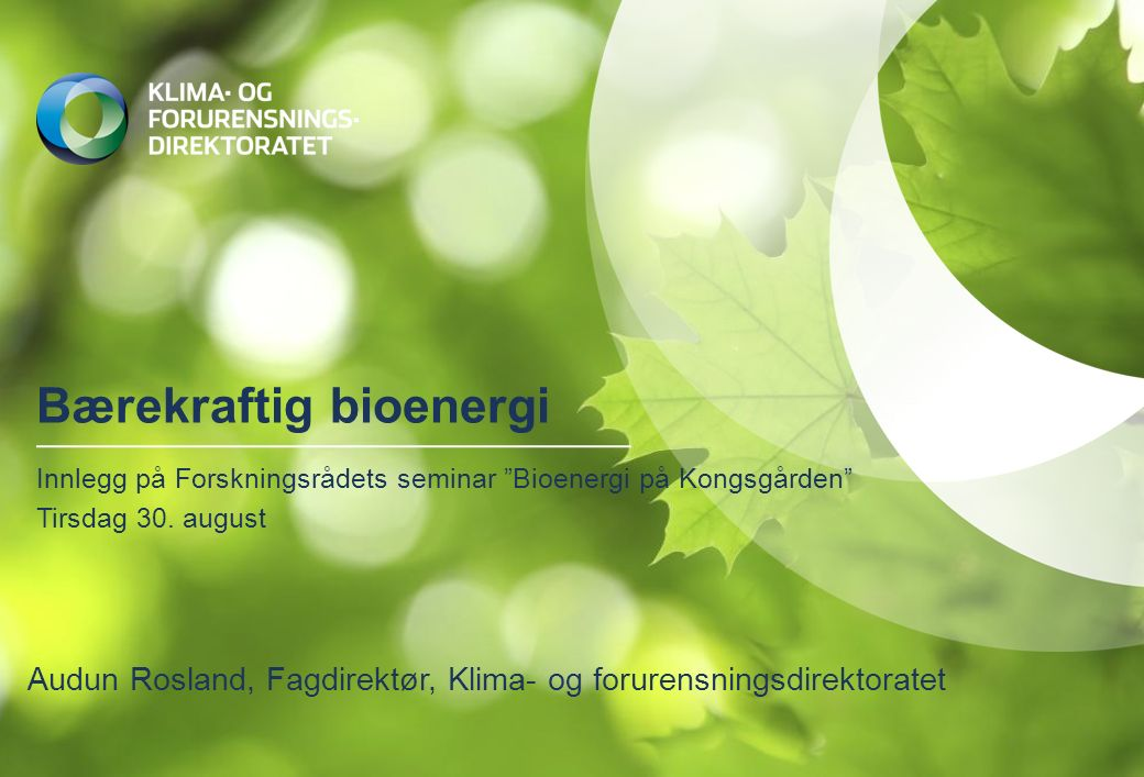 Bærekraftig bioenergi Innlegg på Forskningsrådets seminar Bioenergi på Kongsgården Tirsdag 30.