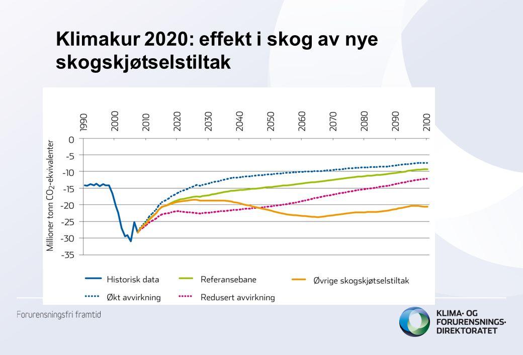 Klimakur 2020: effekt i skog av nye skogskjøtselstiltak