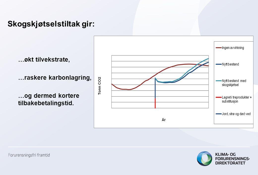 Skogskjøtselstiltak gir: …økt tilvekstrate, …raskere karbonlagring, …og dermed kortere tilbakebetalingstid.