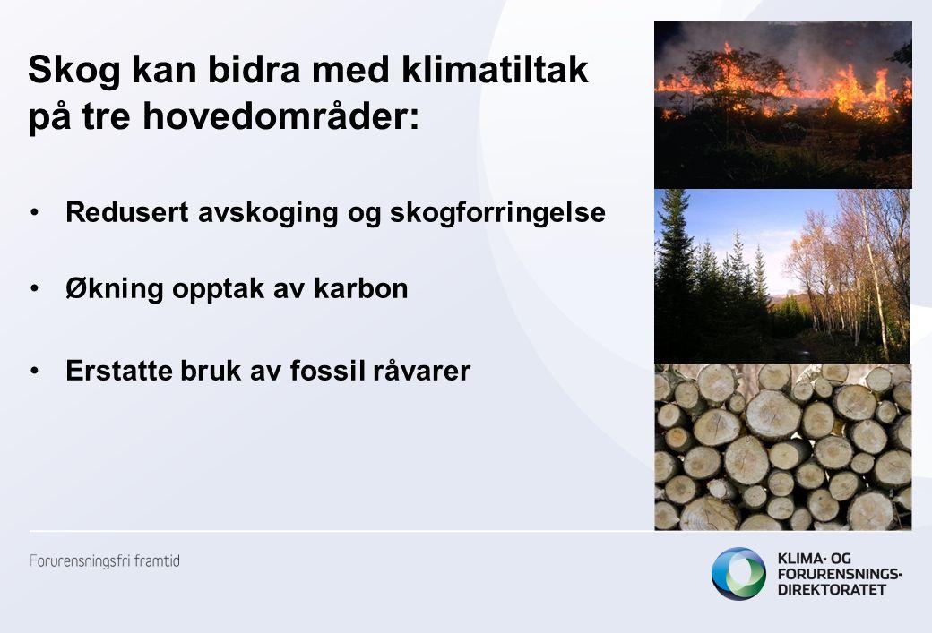 Skog kan bidra med klimatiltak på tre hovedområder: Redusert avskoging og skogforringelse Økning opptak av karbon Erstatte bruk av fossil råvarer