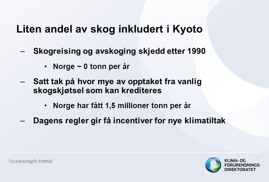 Liten andel av skog inkludert i Kyoto –Skogreising og avskoging skjedd etter 1990 Norge ~ 0 tonn per år –Satt tak på hvor mye av opptaket fra vanlig skogskjøtsel som kan krediteres Norge har fått 1,5 millioner tonn per år –Dagens regler gir få incentiver for nye klimatiltak