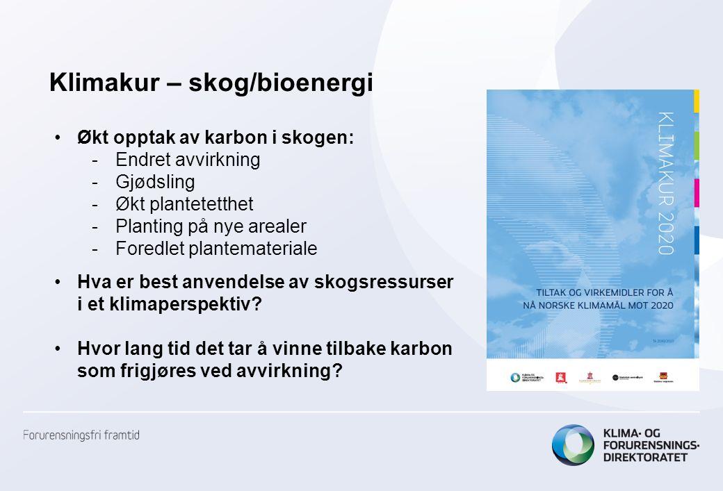 Økende volum i norske skoger: økt tilvekst – stabil avvirkning