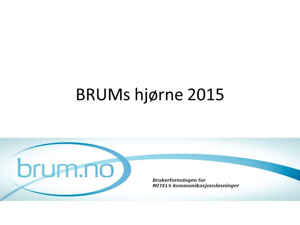 BRUMs hjørne 2015