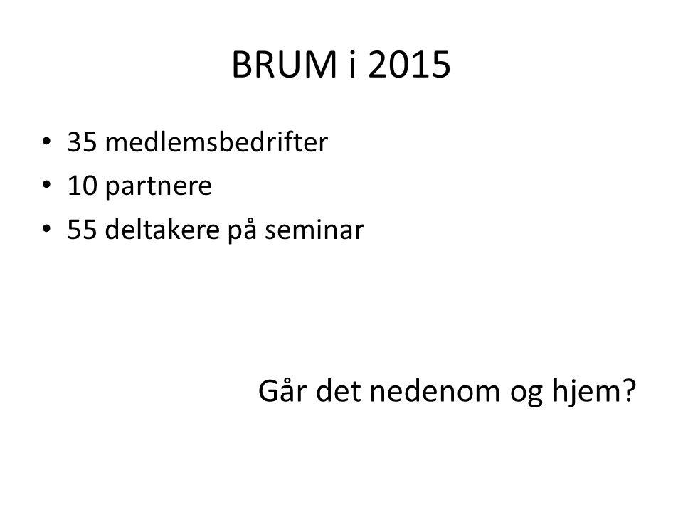 BRUM i 2015 35 medlemsbedrifter 10 partnere 55 deltakere på seminar Går det nedenom og hjem
