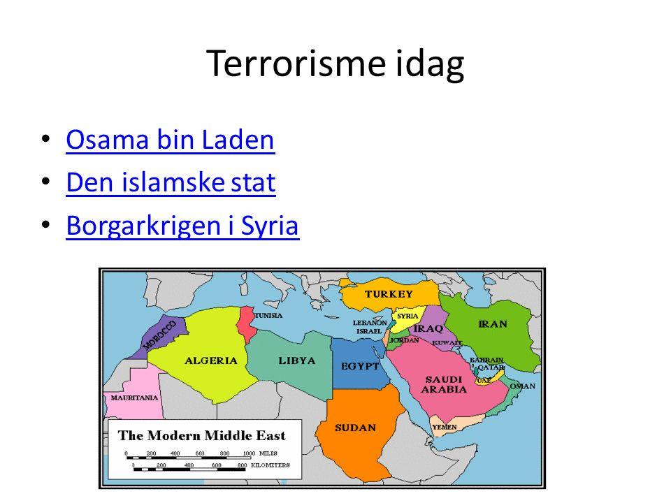 Terrorisme idag Osama bin Laden Den islamske stat Borgarkrigen i Syria
