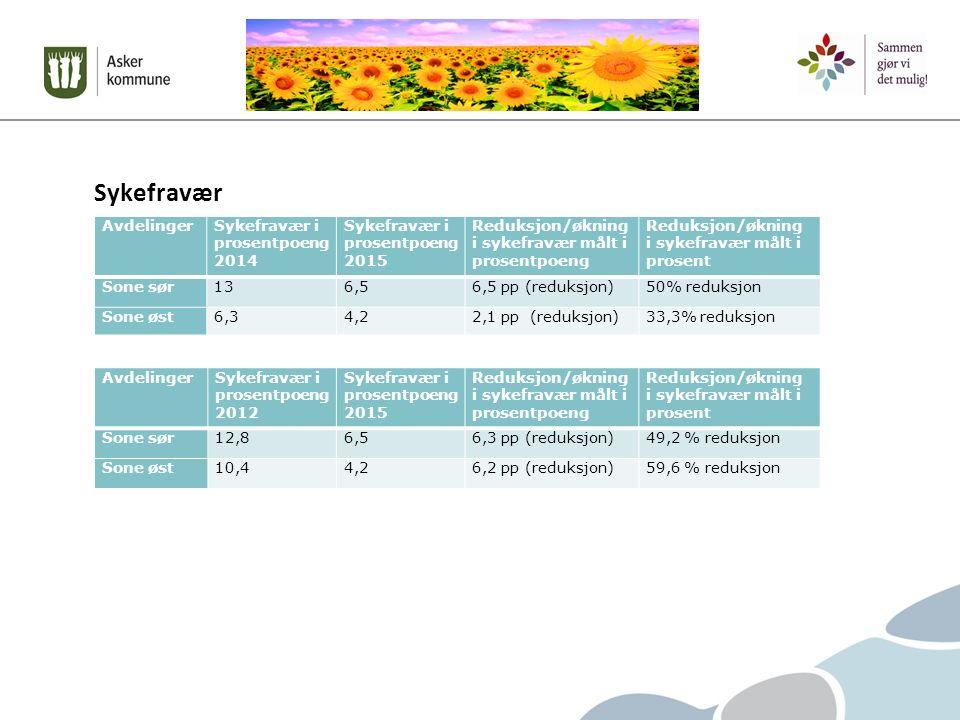 Sykefravær AvdelingerSykefravær i prosentpoeng 2014 Sykefravær i prosentpoeng 2015 Reduksjon/økning i sykefravær målt i prosentpoeng Reduksjon/økning i sykefravær målt i prosent Sone sør136,56,5 pp (reduksjon)50% reduksjon Sone øst6,34,22,1 pp (reduksjon)33,3% reduksjon AvdelingerSykefravær i prosentpoeng 2012 Sykefravær i prosentpoeng 2015 Reduksjon/økning i sykefravær målt i prosentpoeng Reduksjon/økning i sykefravær målt i prosent Sone sør12,86,56,3 pp (reduksjon)49,2 % reduksjon Sone øst10,44,26,2 pp (reduksjon)59,6 % reduksjon