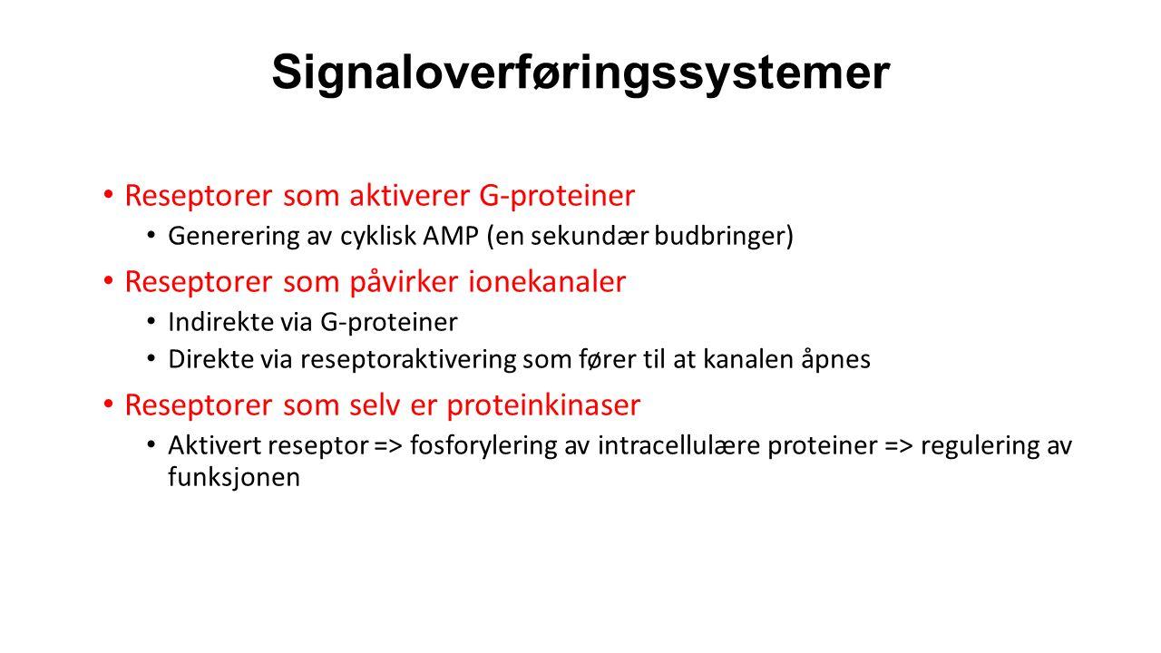 Signaloverføringssystemer Reseptorer som aktiverer G-proteiner Generering av cyklisk AMP (en sekundær budbringer) Reseptorer som påvirker ionekanaler Indirekte via G-proteiner Direkte via reseptoraktivering som fører til at kanalen åpnes Reseptorer som selv er proteinkinaser Aktivert reseptor => fosforylering av intracellulære proteiner => regulering av funksjonen