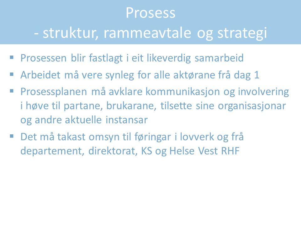 Prosess - struktur, rammeavtale og strategi  Prosessen blir fastlagt i eit likeverdig samarbeid  Arbeidet må vere synleg for alle aktørane frå dag 1