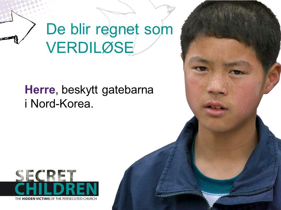 Herre, beskytt gatebarna i Nord-Korea. De blir regnet som VERDILØSE
