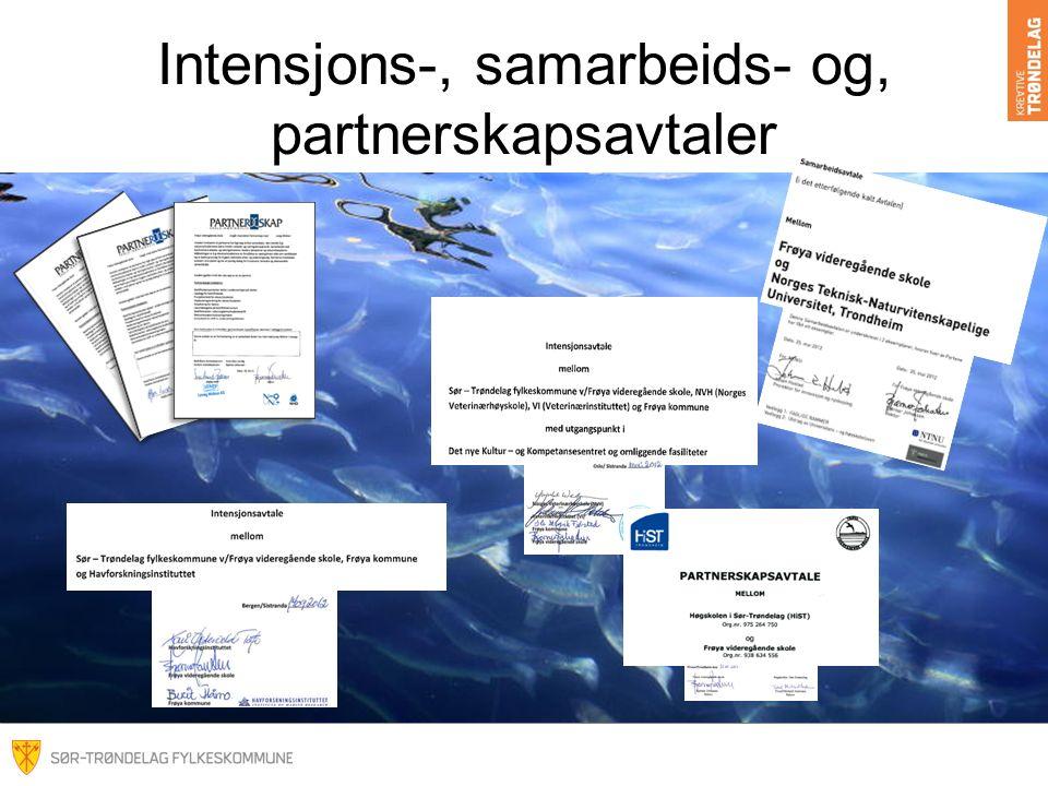 Intensjons-, samarbeids- og, partnerskapsavtaler