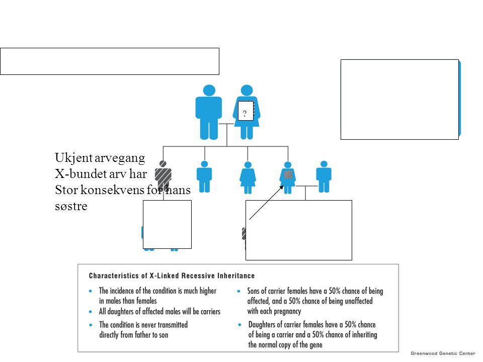 Ukjent arvegang X-bundet arv har Stor konsekvens for hans søstre
