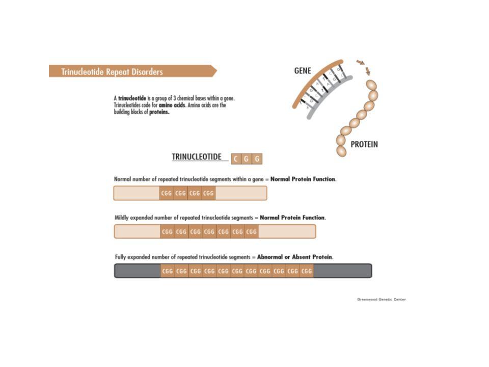 Muskelsyke og genteknologi Diagnosebekreftelse SMA-spinal muskelatrofi Dystrofia myotonica- 2 typer Duchenne/ Becker Facioskapulohumeral muskeldystrofi Limb-Girdle Eikersjuka- Charcot-Marie-Tooth type 2 Diverse andre