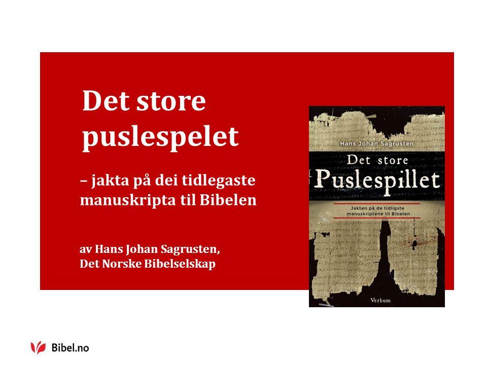 Det store puslespelet – jakta på dei tidlegaste manuskripta til Bibelen av Hans Johan Sagrusten, Det Norske Bibelselskap