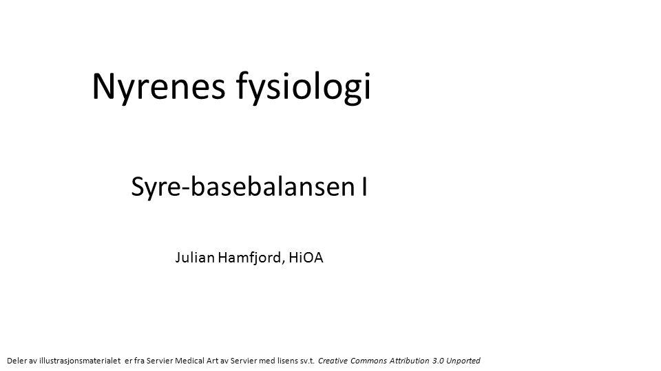 Nyrenes fysiologi Syre-basebalansen I Julian Hamfjord, HiOA Deler av illustrasjonsmaterialet er fra Servier Medical Art av Servier med lisens sv.t.